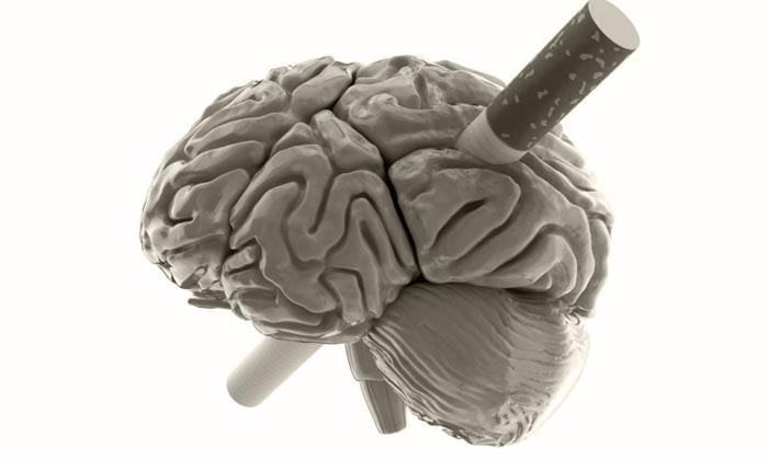 как курение влияет на сосуды головного мозга