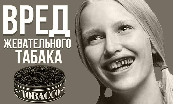 жевательный табак вред